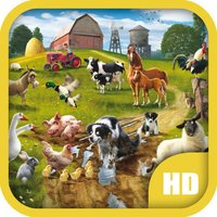 Animals & Birds HD Wallpapers