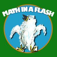 Math In A Flash (lite)