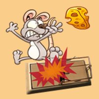 Little Rat Adventure