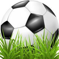Best Soccer Quiz