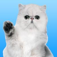 PersianMoji - Stickers & Keyboard for Persian Cats