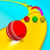 Cricket Ball Rainbow Color