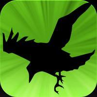 Raven Toll
