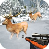 Extreme Deer Shooting