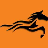 Reyna Equestrian