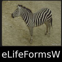 World Life Forms Sampler - eLifeFormsW - An Introductory Life Form App