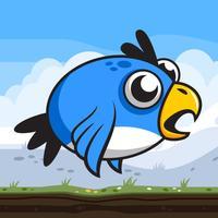 Hippy Bird