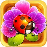 Blosom Garden: Beautiful Flower