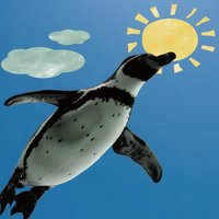 Penguin in the sky