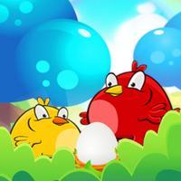 Birds vs Eggs