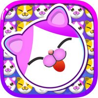 Cats to play—the most fun game