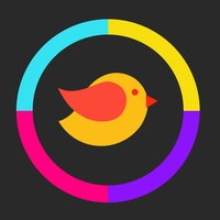Color Bird - Hop & Switch Between Flop Walls