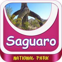 Saguaro National Park United States