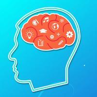 Brain Games Combo
