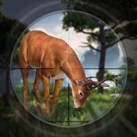 Jungle Safari Deer Hunting Edition