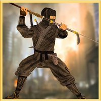 Ninja Assassin Fighter 3D
