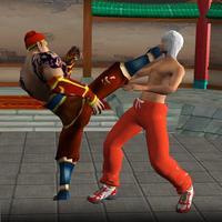 Karate Fighting Warrior 3D