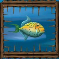 Maze fish