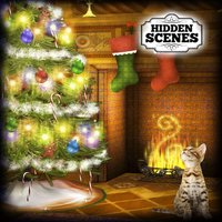Hidden Scenes - Happy Holidays