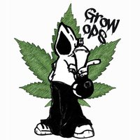 Grow Ops - The weed firm game; buy, farm, sale.