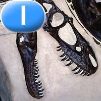 Discovering Dinosaurs - LAZ Reader [Level I–first grade]