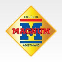 Conecta Magnum