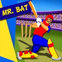 Mr. Bat