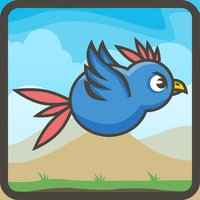 Crazy Bird Zoo Escape Attack Game
