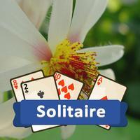 Solitaire Plants