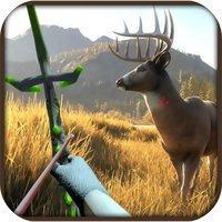 Archery Forest Animal 3D