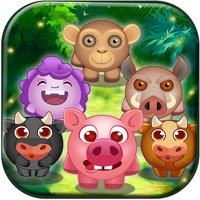 Match The Animals 3D