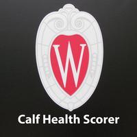 Calf Health Scorer