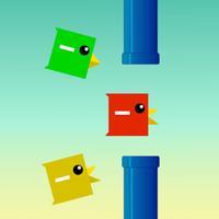 Bird Squash