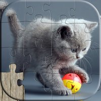 Cat Puzzles for Kids - Relaxing photo picture jigsaw puzzles for kids and adults