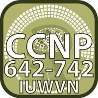 CCNP 642 742 IUWVN for CisCo