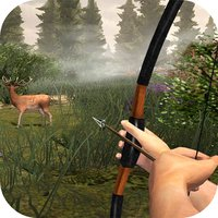 Safari Archery Skill