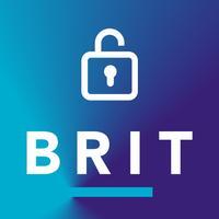 Brit's Cyber Response