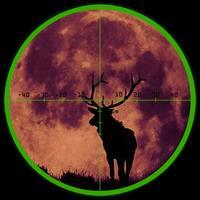 A Best Deer Hunting Reload & Animal Shoot-ing Sniper Game by Range Target-ed Fun Free