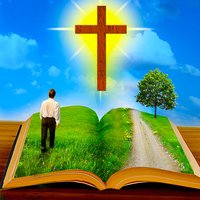 Bible Quotes - Daily Bible Studies and Random Devotions