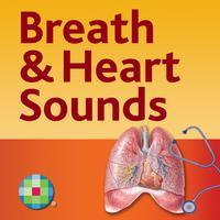 Breath & Heart Sounds: Auscultation Skills Audio Review