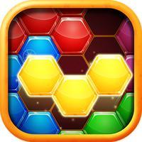 Block Hexa Puzzle - Hexa Block Hexagons