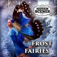 Hidden Scenes - Frost Fairies