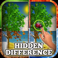 Hidden Difference - Four Seasons of Joy