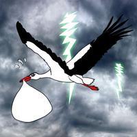 Burden Stork