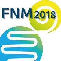 FNM 2018