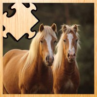 Animated Haflinger Horse-s Wood Puzzle With Beautiful Ponies - Gratis Educational Kids Game Fun For the Whole Family. Girls and Boys Learn