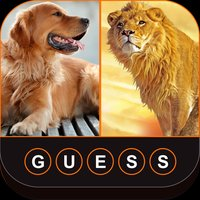Guess The Animals: Animal Quiz