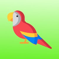 Parrot World Memory Trainer