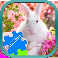 Rabbit Animal Jigsaw Puzzle Drag and Drop for Kids