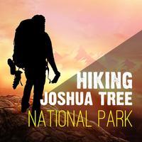 Hiking - Joshua Tree National Park